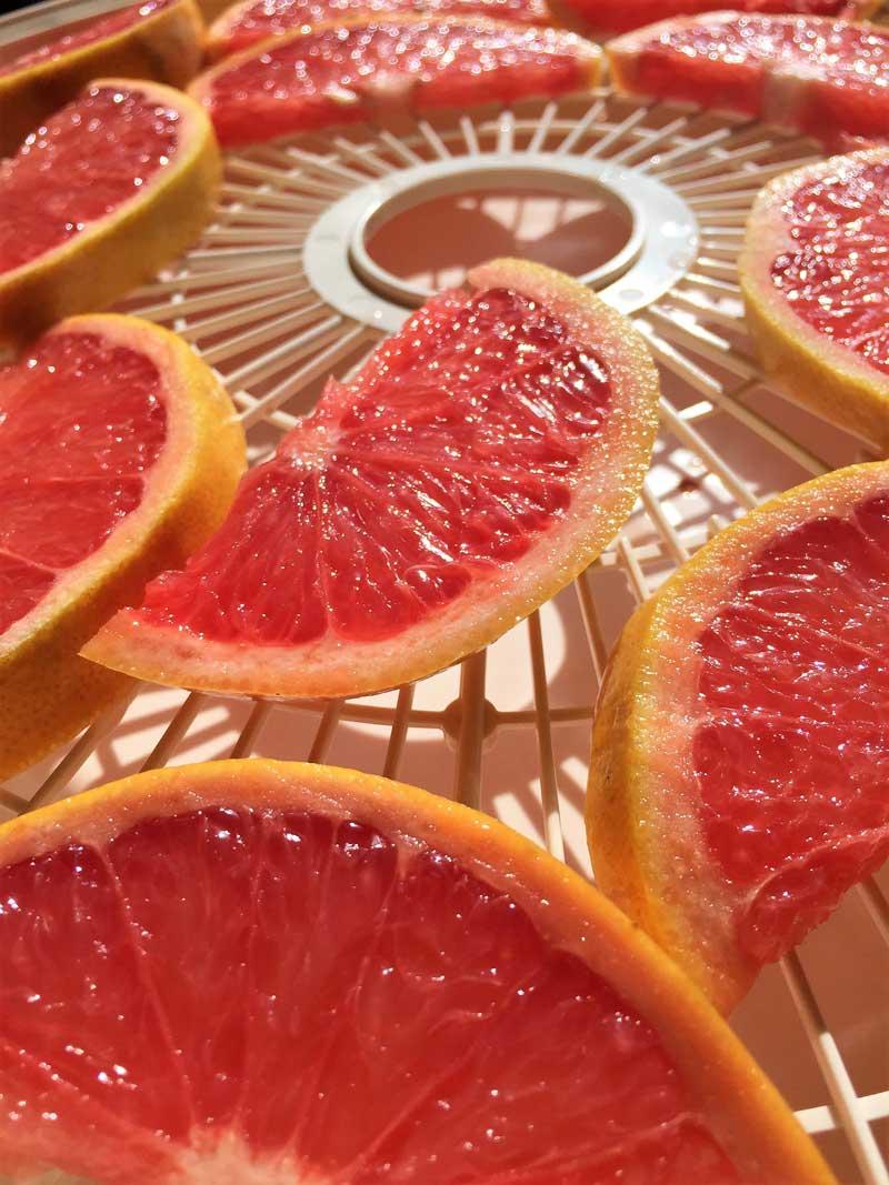National Tea Day Fancy Tea Blend Grapefruit
