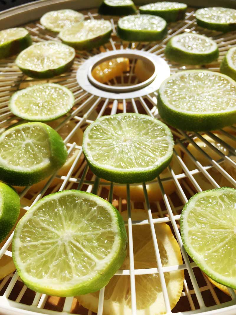 National Tea Day Fancy Tea Blend Lime
